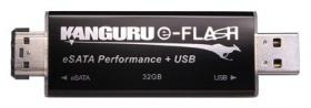 Kanguru e-Flash Drive