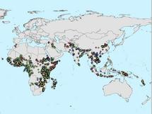 Malaria Atlas Project maps malaria occurrences world-wide