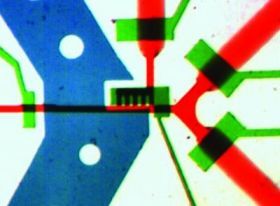 Microchip Hang Lu