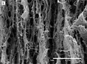 Nanopaper