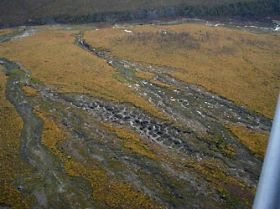 Permafrost carbon content double the old estimates
