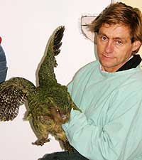 Geometric model could mean breakthrough in saving endangered kakapo