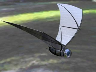Sensors for bat-inspired spy plane under development