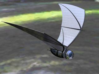 Sensors for bat-inspired spy plane under development