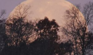 Solstice Moon Illusion