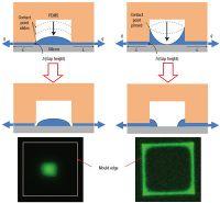 'Stamping' self-assembling nanowires