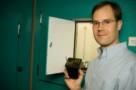 UD researchers discover novel 'gene toggles' in world's top food crop