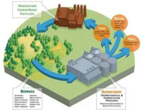 UGA Biorefinery and Carbon Cycling Program