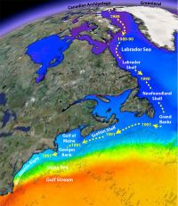 'Unprecedented' warming drives dramatic ecosystem shifts in North Atlantic