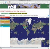 Web tool puts wildlife diseases on the map