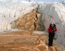 Ancient ecosystem thrives millions of years below Antarctic glacier
