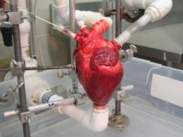 'Beating' heart machine expedites research and development of new surgical tools, techniques