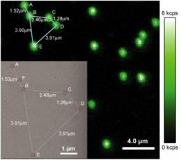 Nanocrystals reveal activity within cells