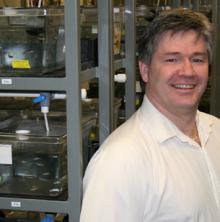 Researcher looking for nano environmental footprint