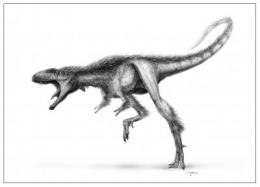 paynasaur Profile