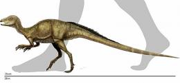 Scientists ID fossil bones of smallest dinosaur