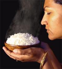 Researchers uncover genetic origins of rice fragrance