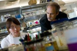 'Evolutionary forecasting' for drug resistance