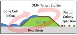 Implant bacteria, beware: Researchers create nano-sized assassins