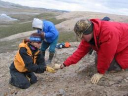53 million-year-old high Arctic mammals wintered in darkness