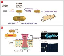 Researchers Use Golden Nanotubes for Imaging Agent to Detect Tumor Cells, Map Sentinel Lymph Node