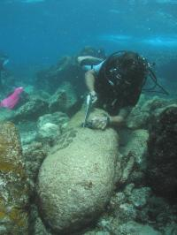 Link between unexploded munitions in oceans and cancer-causing toxins determined