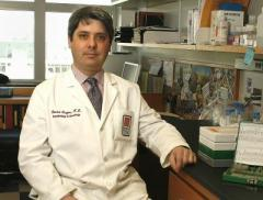 A miR boost enables acute leukemia cells to mature