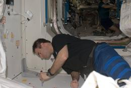 Astronaut Greg Chamitoff swabs for fungi on Aug. 20, 2008