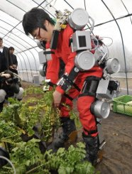 A student uses the robot suit to pull a radish plant