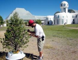 Biosphere 2 experiment shows how fast heat could kill drought-stressed trees