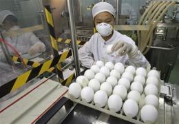 China approves single-dose swine flu vaccine (AP)