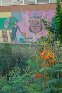 Community gardens don't impact crime rate