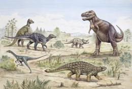Dinosaurs declined before mass extinction