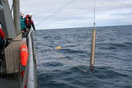Endangered right whales found where presumed extinct