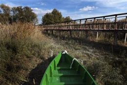 EU probes mismanagement in prized Spanish wetland (AP)