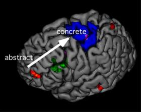 Evidence appears to show how and where frontal lobe works