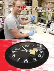 Feeding the clock
