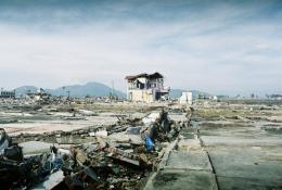Going vertical: Fleeing tsunamis by moving up, not out