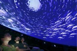 IBC 2009: Immersive Dome -- don't just watch, join the action