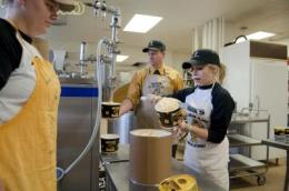 Ice cream researchers making sweet strides with 'functional foods'