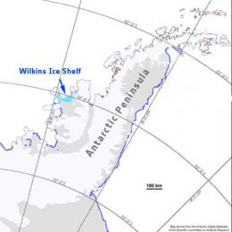 Map showing the Wilkins Ice Shelf in Antarctica