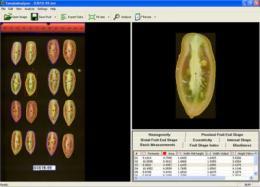 New and improved tomato analyzer