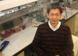 New Method Developed by UC San Diego Bioengineers Gives Regenerative Medicine a Boost
