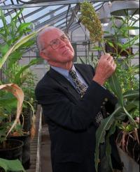 Nobel Peace Prize winner Norman Borlaug dies at 95 (AP)