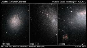 Starbursts in Dwarf Galaxies are a Global Affair