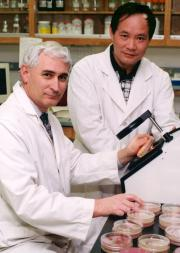 UGA licenses invention that kills food-borne pathogens in minutes