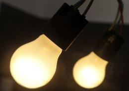 Using energy-saving light bulbs instead of the old incandescent ones could save an average household 166 euros a year
