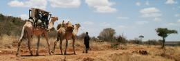 VIDEO: Solar power cools camel-transported vaccines on treks to remote areas