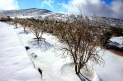 White blanket of snow covers the Jees Mountain in the Gulf emirate of Ras Al-Khaimah
