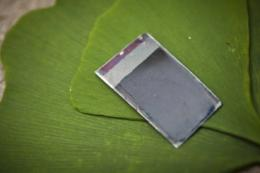'Artificial leaf' makes fuel from sunlight (w/ video)